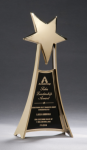 Star Casting Trophy in Gold Tone Finish Star Cast Awards